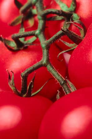ful: Tomatoes
