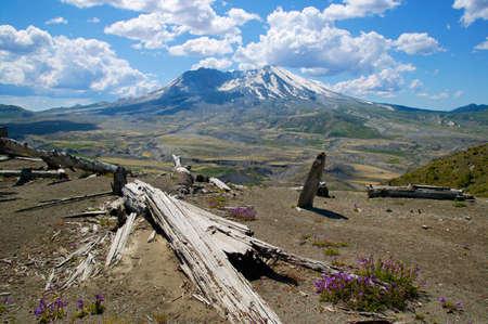 helens: Mount St. Helens,Washington,USA