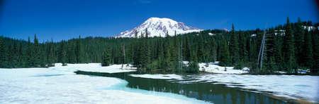 mt rainier: Mt. Rainier,Washington,USA