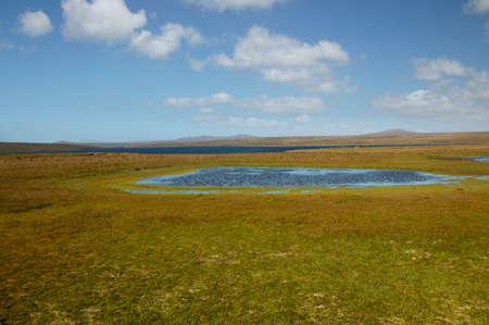ful: Near Volunteer Point,East Falkland islands