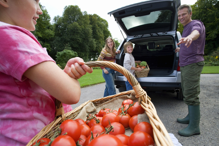 two generation family: Two generation family loading car with fresh vegetables, girl (8-10) carrying basket full of tomatoes, smiling, side view, close-up