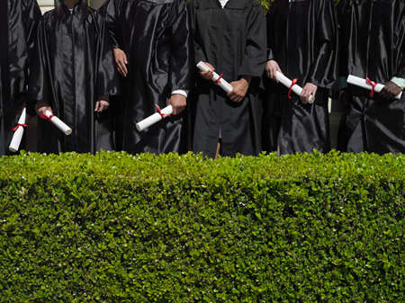 midsection: Row of university students in graduation gowns holding diplomas, mid-section, hedge in foreground