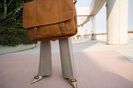 low section view: Businesswoman holding briefcase, low section, front view LANG_EVOIMAGES