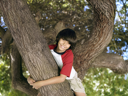 recreational climbing: Boy (10-12) sitting in tree in park, smiling, portrait, low angle view