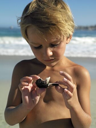 bare waist: Blonde boy (4-6) standing on beach, holding sea shell, close-up, front view LANG_EVOIMAGES