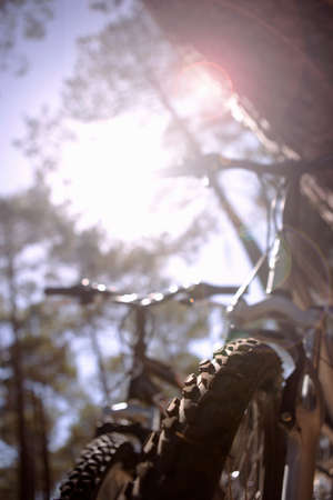 space weather tire: Bicycles in forest, low angle view (lens flare)