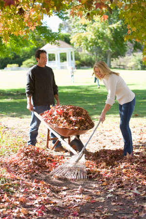 yard work: Couple doing yard work in autumn LANG_EVOIMAGES