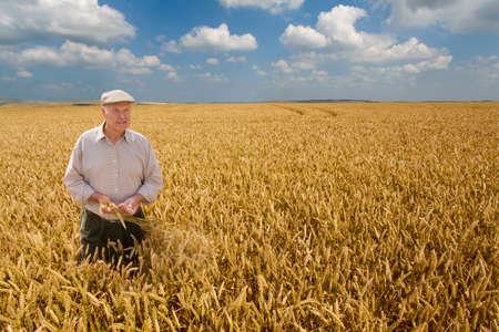 granjero: Granjero que se coloca en campo de trigo LANG_EVOIMAGES