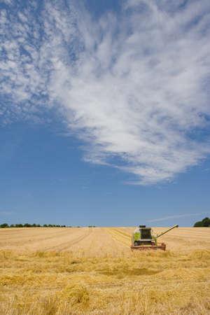 combine: Combine in barley field