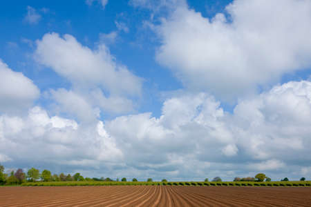 the ploughed field: Ploughed field with clouds in sky