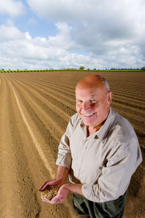 the ploughed field: Smiling farmer cupping wheat grains in ploughed field