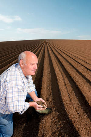 the ploughed field: Farmer cupping soil in ploughed field LANG_EVOIMAGES