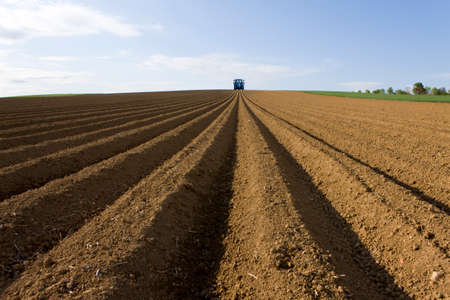 the ploughed field: Ploughed field with tractor in distance