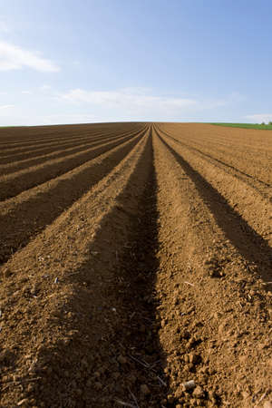the ploughed field: Close up of ploughed field
