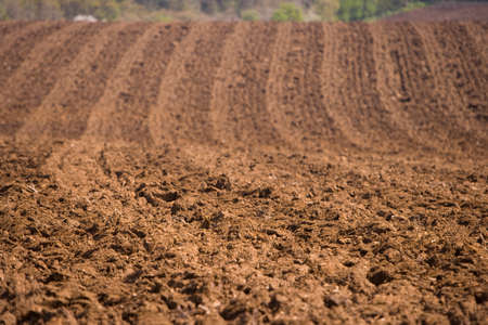 ploughed: Close up of ploughed field