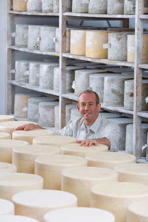 storing: Portrait of smiling cheese maker in cellar with aged and young farmhouse cheddar cheese wheels
