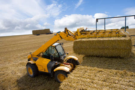 stacking: Tractor stacking straw bales on trailer in sunny rural field LANG_EVOIMAGES
