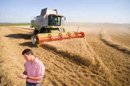 intent: Farmer in barley field