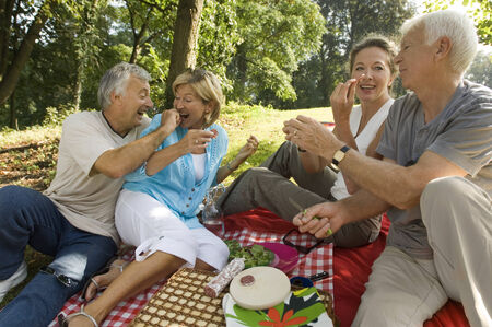 picnic blanket: Elderly couples on a picnic