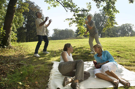 Two elderly couples out on a picnic