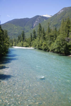 skagit: Skagit river,Snoqualmie National Forest,Washington,USA