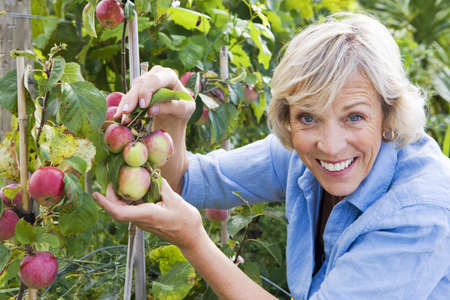 l nutrient: Senior woman holding fruit growing in garden, smiling, close-up, portrait