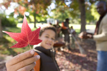 toils: Multi-generational family collecting autumn leaves in garden, focus on boy (7-9) holding red maple leaf in foreground LANG_EVOIMAGES