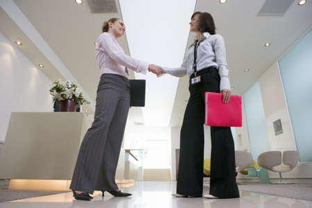 toils: Two businesswomen shaking hands in lobby, smiling, side view, surface level LANG_EVOIMAGES