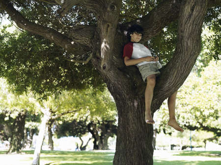 western european ethnicity: Boy (10-12) sitting in tree in park, listening to MP3 player, smiling