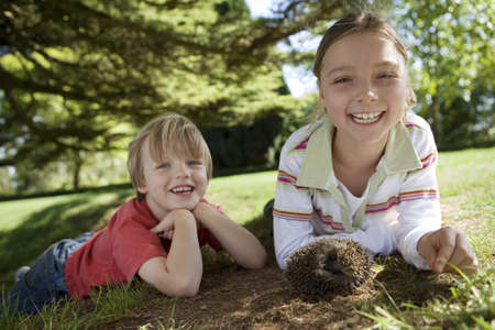 waistup: Boy (4-6) and girl (7-9) lying on grass in garden beside hedgehog, smiling, portrait, surface level (tilt) LANG_EVOIMAGES