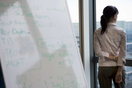 toils: Businesswoman looking through office window near whiteboard, rear view, focus on background LANG_EVOIMAGES