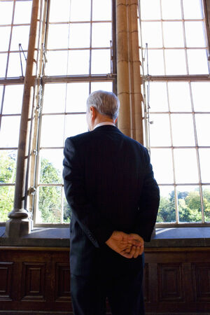 professionalism: Businessman with arms behind back, looking out window, rear view LANG_EVOIMAGES
