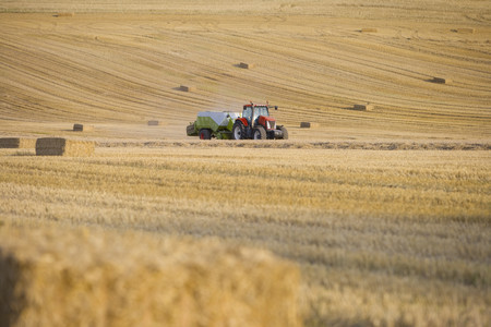 baler: Tractor and straw baler in sunny wheat field LANG_EVOIMAGES