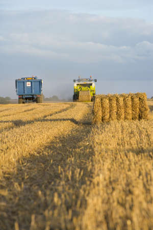 baler: Straw bale and baler in harvested wheat field