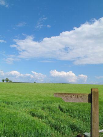 milepost: Barley field behind milepost marked ÒfootpathÓ