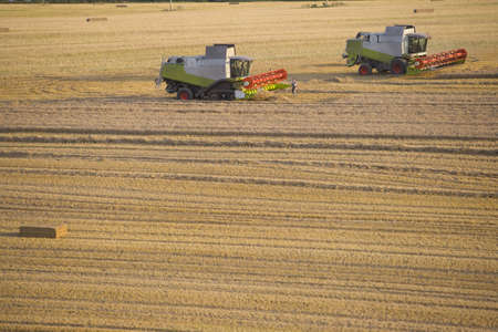 combines: Combines harvesting wheat in sunny, rural field LANG_EVOIMAGES