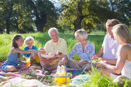 multi generation: Multi generation having picnic in treelined field
