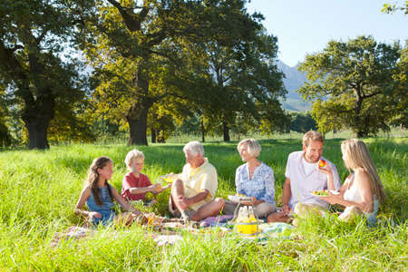 Multi-generation family having picnic in rural field LANG_EVOIMAGES