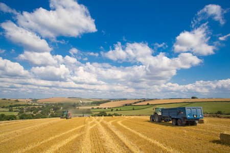 Tractors baling straw in sunny rural field