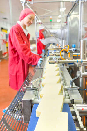 food inspection: Quality control workers checking cheese on production line in processing plant LANG_EVOIMAGES