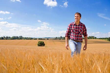 Farmer walking in sunny rural barley crop field in summer