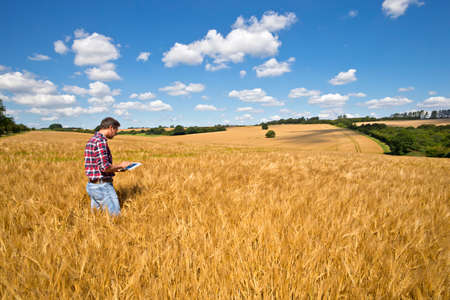 Farmer using digital tablet in sunny rural barley crop field in summer