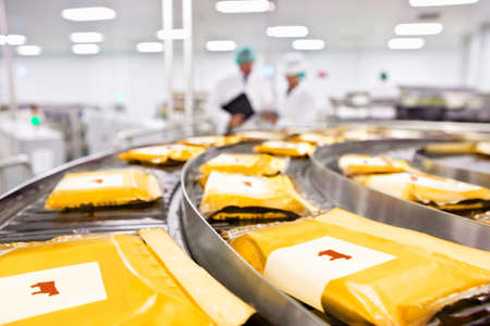 Cow labels on packages of cheese on conveyor belt in processing plant LANG_EVOIMAGES