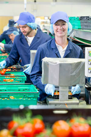 woman handle success: Portrait smiling worker packing tomatoes in food processing plant LANG_EVOIMAGES