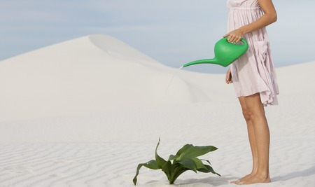 against all odds: A woman watering a plant in the sand
