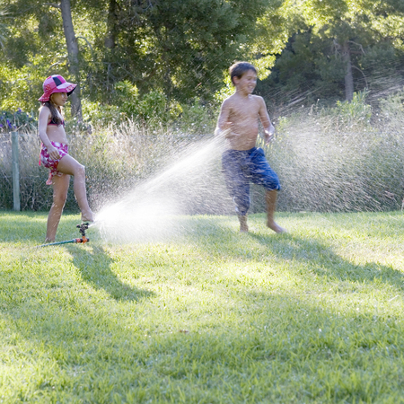 hosepipe: Young boy and girl playing with water in the garden