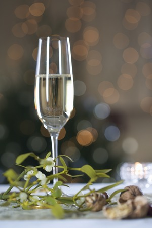 champers: A glass of champagne and mistletoe