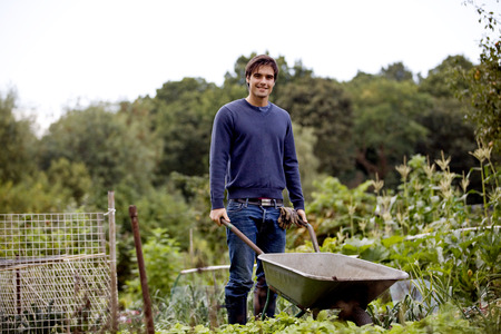 self sufficient: A young man pushing a wheelbarrow on an allotment