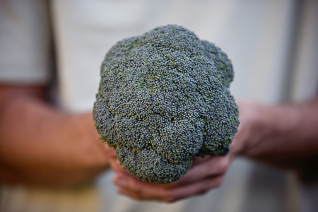 self sufficient: A man holding a head of broccoli LANG_EVOIMAGES