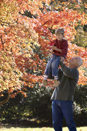 Grandfather lifting grandson into tree to collect autumn leaves in park Stock Photo